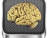 Brain Anatomy: interessante applicazione medico-educativa riguardante il campo delle neuroscienze
