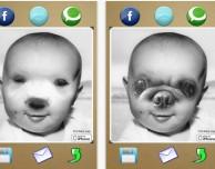 Pet Baby: trasforma il tuo cane in un… mostro!