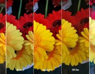 Fotocamera di smartphone a confronto: Galaxy S4, iPhone 5, Lumia 920, HTC One e Xperia ZL