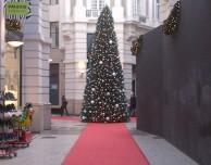 Olanda: torna l'albero di Natale davanti l'Apple Store
