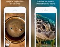 500px si aggiorna per iOS 8 e supporta la condivisione da altre app