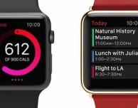 Il marketing per Apple Watch è concentrato sull'universo femminile: ecco perchè!