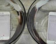 iPhone 6S: immerso per un'ora in acqua resta completamente funzionante