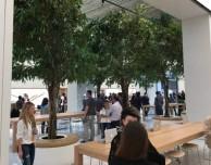 Ecco alcune immagini e video del prossimo Apple Store di Dubai