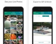 Live Photos nel formato GIF e MOV con Lively