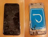 Apple è disposta a riparare un iPhone rimasto in mare per oltre 8 mesi