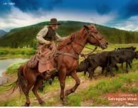 Lo Stato del Colorado lancia l'app turistica gratuita in Italiano