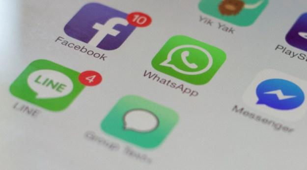 Il supporto per le GIF sta per arrivare su WhatsApp