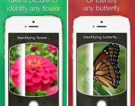 LikeThat Garden: l'app per vivere al meglio la bella stagione
