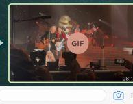 Le GIF animate arrivano (ufficialmente) su WhatsApp