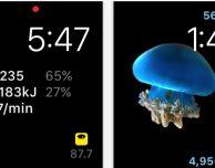 HealthFace, la più completa app Salute per Apple Watch