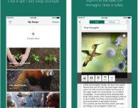 Microsoft Sway si aggiorna su App Store