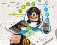 Kippy Vita, GPS e Activity Monitor per il tuo animale domestico – Recensione