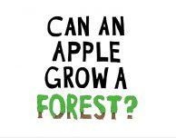 Apple annuncia il suo progetto per la protezione delle foreste