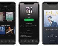 L'app Spotify è ottimizzata per iPhone X
