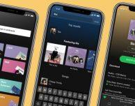 Tante novità per gli utenti Spotify Premium