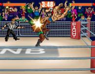 Slam Mania: un omaggio ai classici giochi del wrestling
