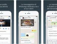 WhatsApp Business disponibile anche in Italia