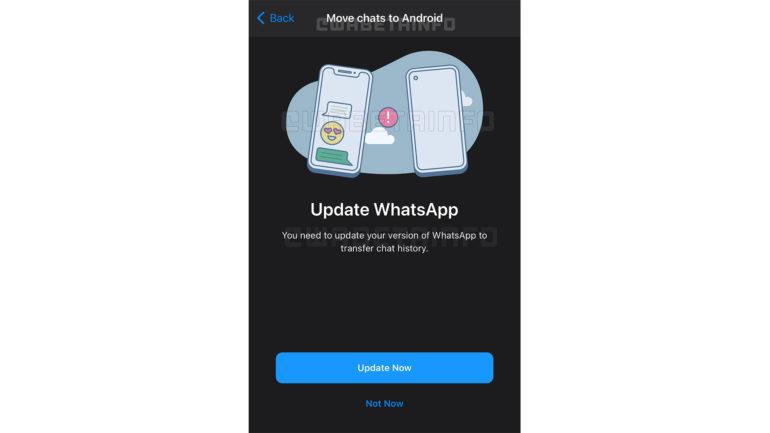whatsapp test